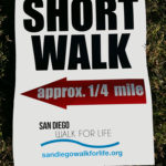 An optional short walk was provided for participants